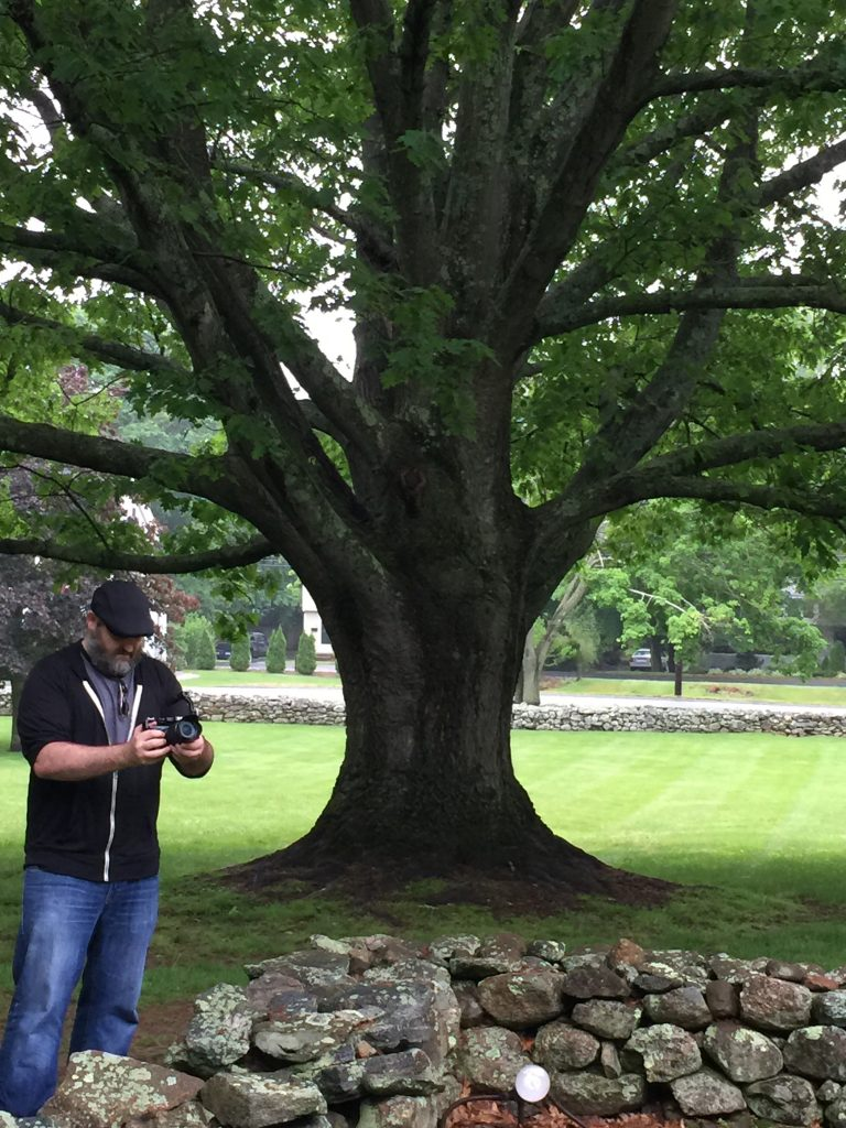 Old Old Tree with Matt Guilford CT 6-5-2016